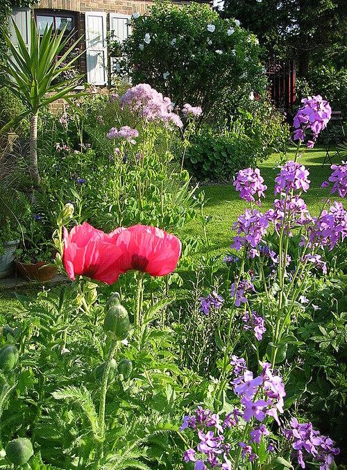 Le jardin au fil des saison 1