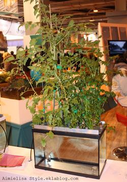 Salon de l'agriculture 2014