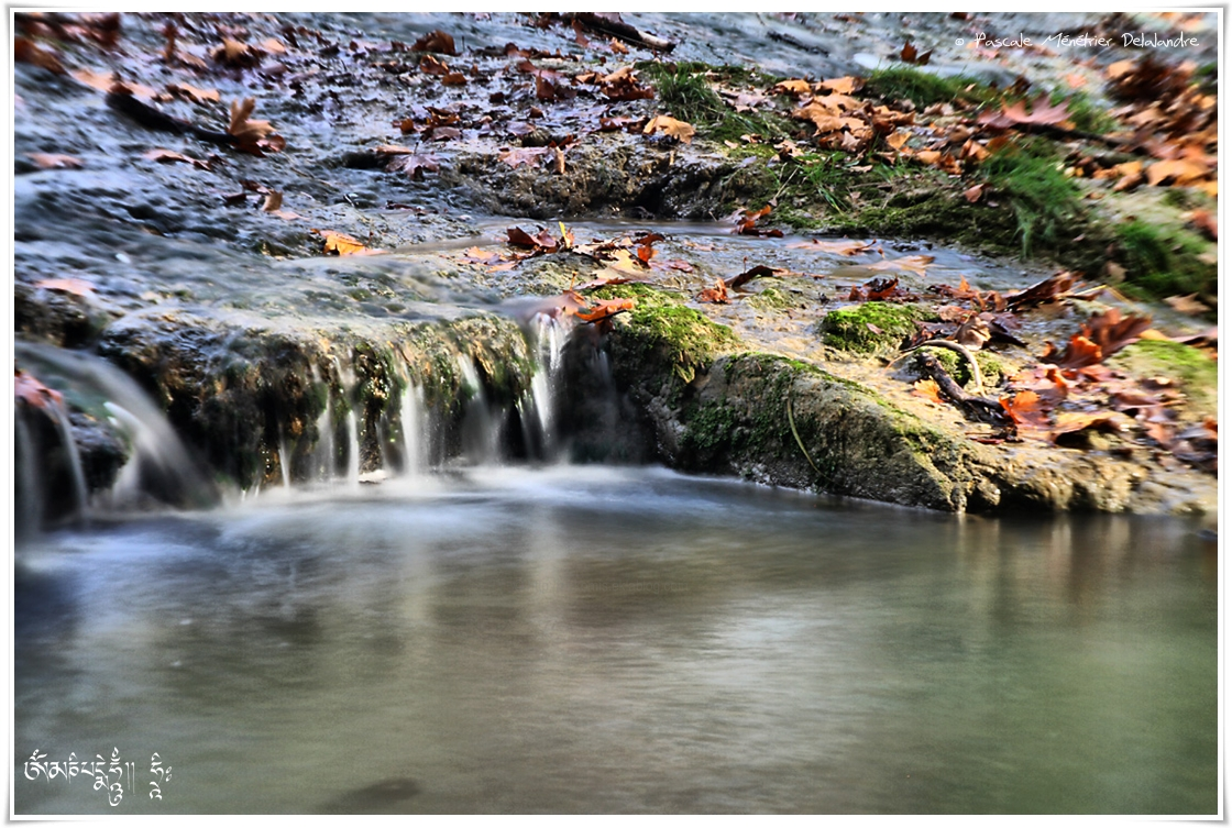 La terre, l'eau, la vie.