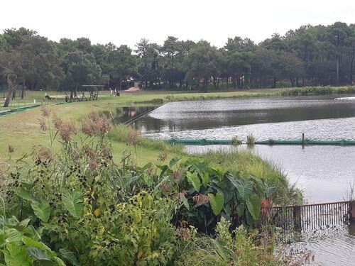Étang Pinsolle et golf
