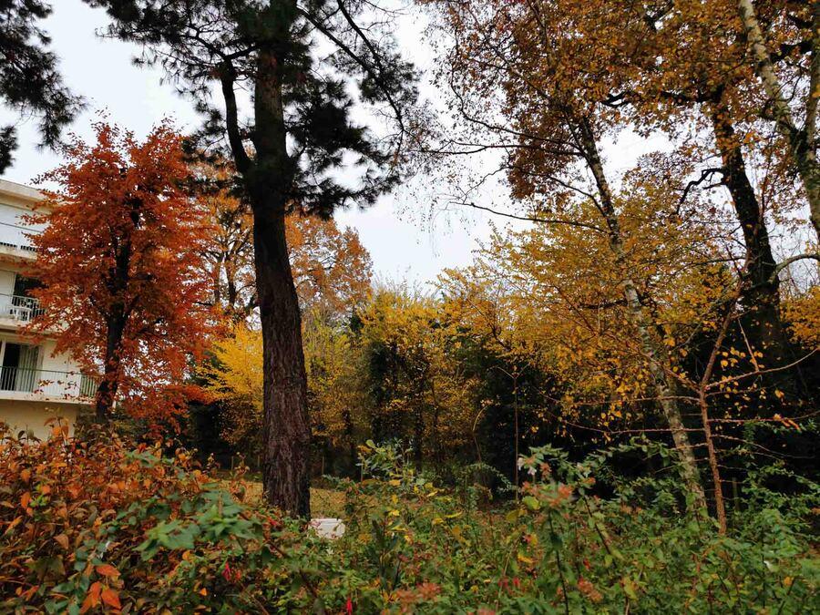 « L'automne au Domaine »