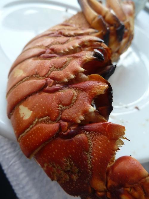 Du homard pour la nouvelle année * Ένας Αστακός