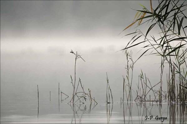 Aurore au lac de Marcenay, encore quelques belles photos de Jean-Pierre Gurga...