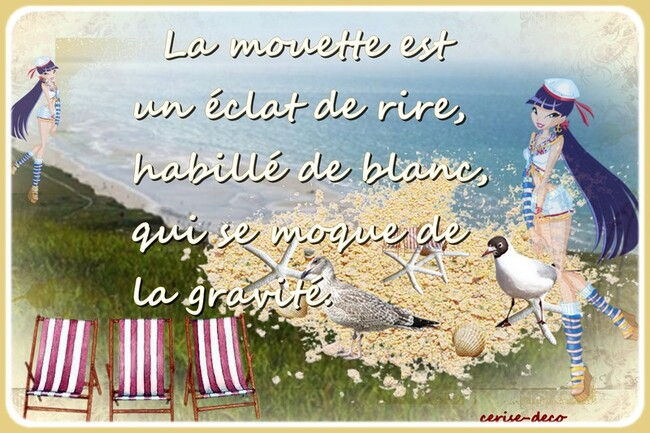 citation illustrée la mouette