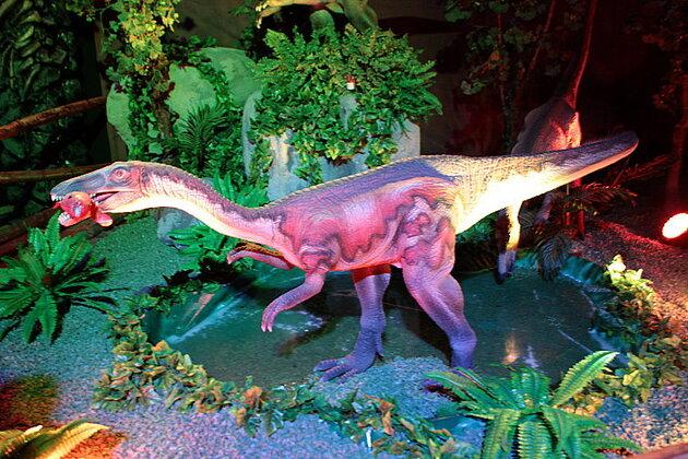 Le concours des paléontologues