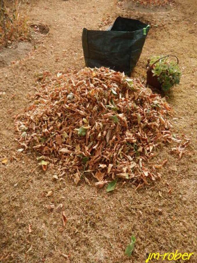Limousin: la sécheresse donne des signes comme en 1976.....
