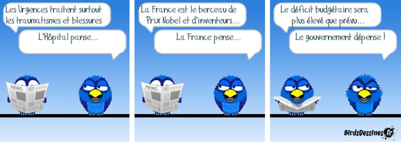 Les birds .....