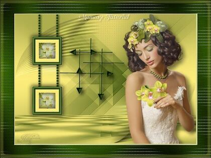 Miss Orchidée