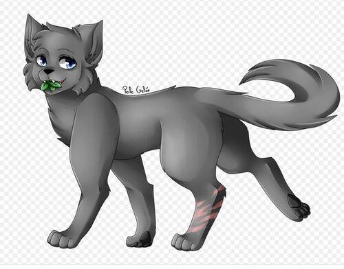 Description de chats LGDC