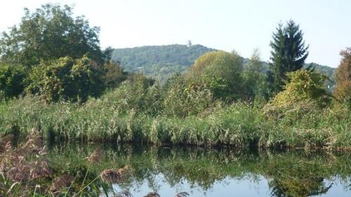 Mont Saint-Quentin (25 septembre 2011)
