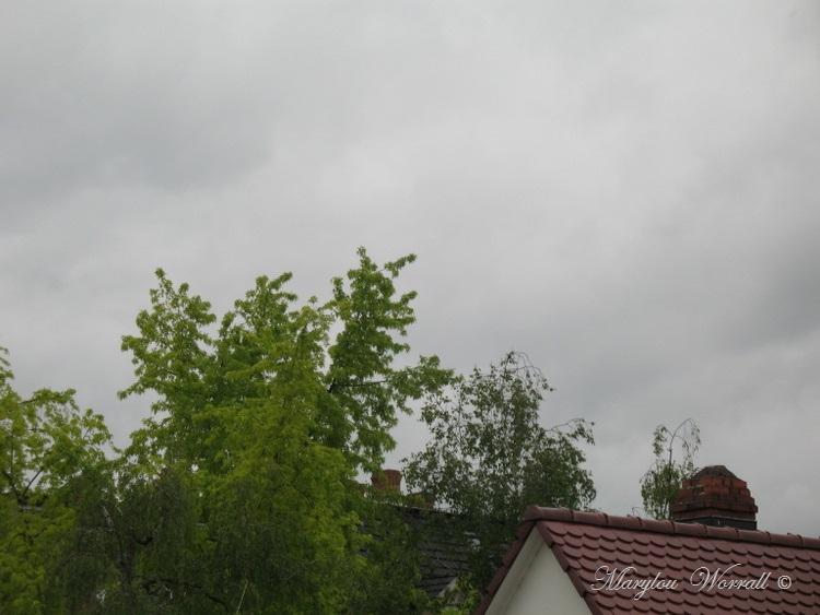 Ciel d'Alsace 269