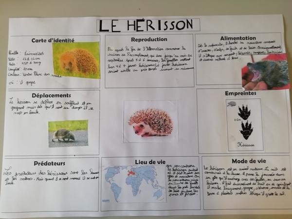 Le RPI de Belan sur Ource-Brion sur Ource a réalisé une belle étude sur les espaces naturels sensibles de la Côte d'Or