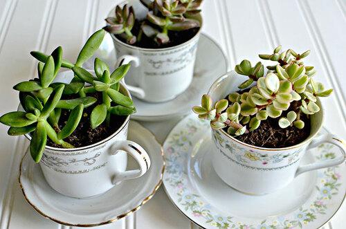 1- Des théières transformées en jolis pots de fleurs!