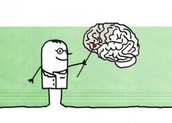 Et notre cerveau, comment va-t'il?