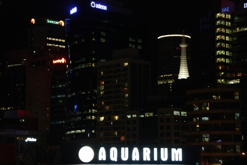Sydney-2-347.jpg