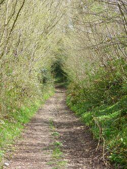 Le Chemin des Collines