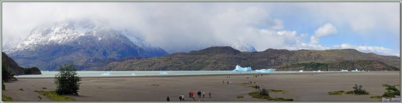 Lago Grey - Parque Torres del Paine - Patagonie - Chili