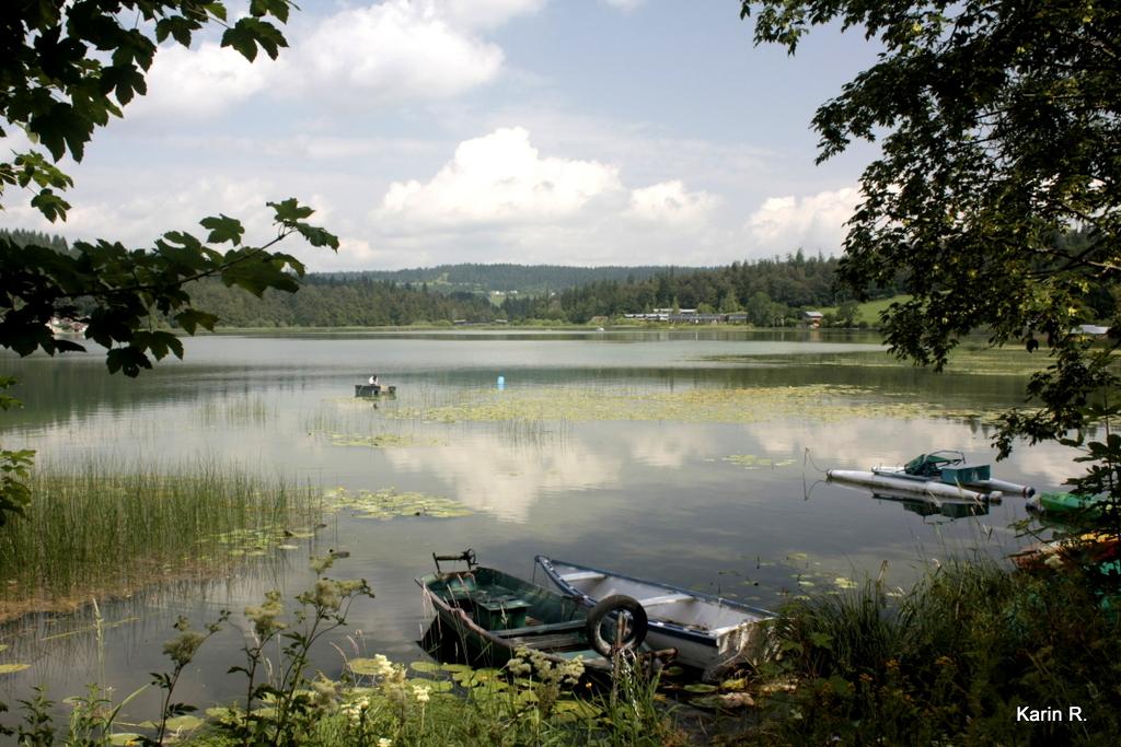 Le lac en été, 2