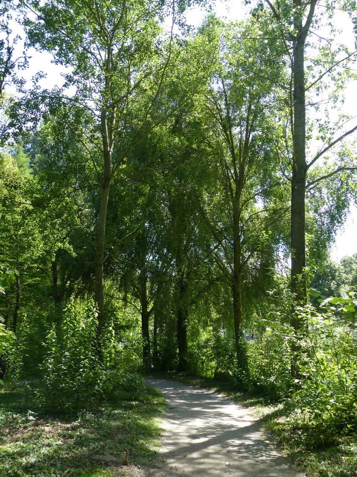 Amiens, une ville en pleine nature