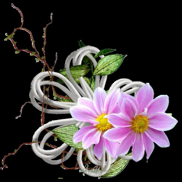 Tube virágok