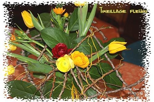 03 02 03 10 treillage fleuri (4)