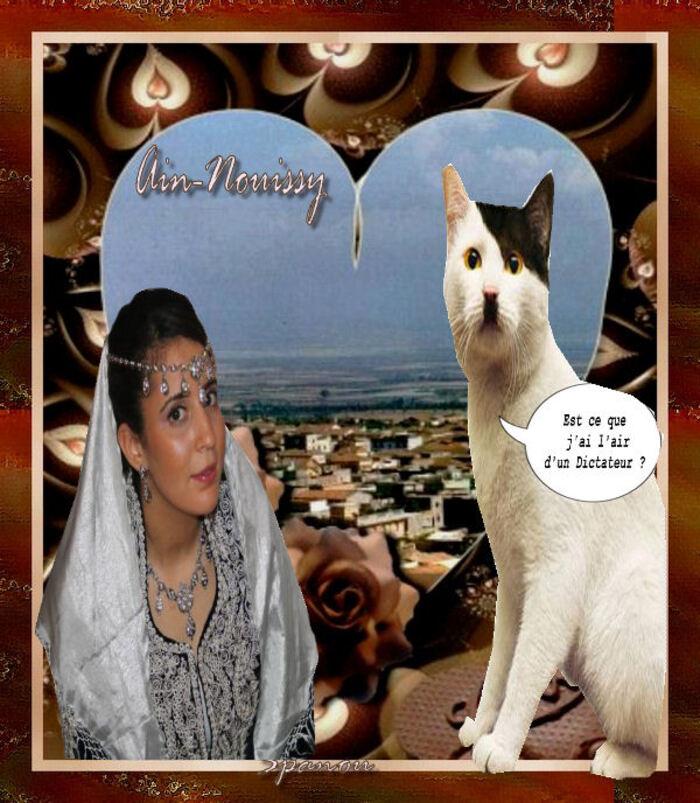 Ain-nouissy (1)