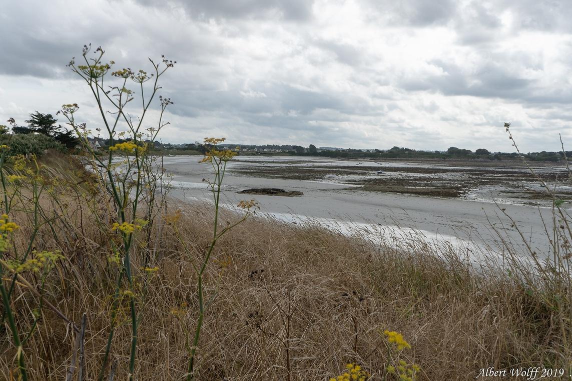 Santec : Une plage bretonne - sans dec? (2)