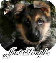Pour le concours de Just Simple