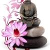 boudda zen