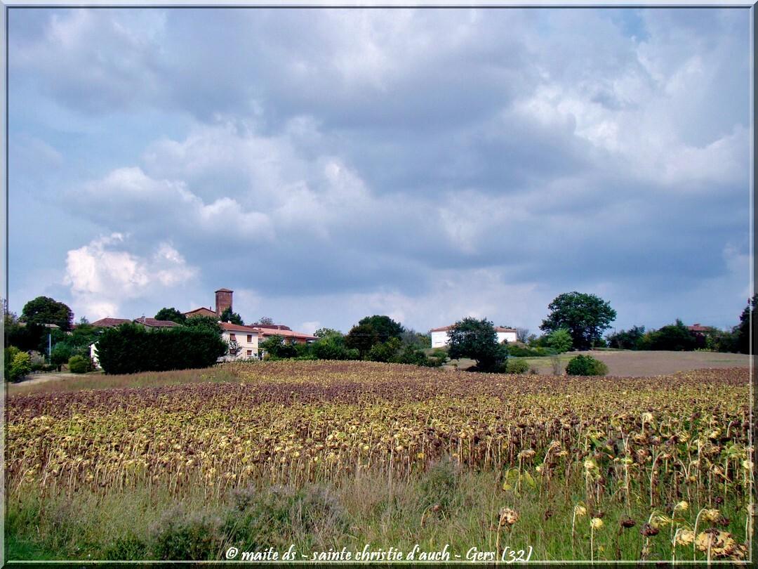 Sainte-Christie d'Auch - Villes et villages du Gers - 32 (4)