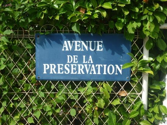 rue_preservation