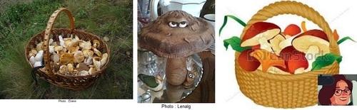 Allons aux champignons, Éliane, Victoria, Lenaïg, haïkus et chanson