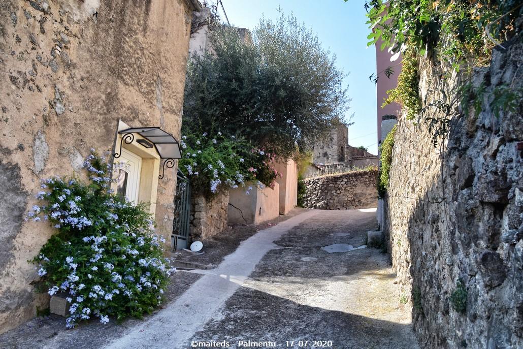 Palmentu - Santa-Reparata-di-Balagna  -  Corse