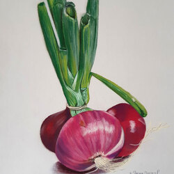 Bouquet d'oigons 30 x 30 (vendu) Sylvie Marin-Durand