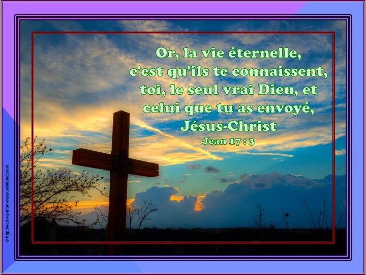 La vie éternelle, c'est qu'ils te connaissent - Jean 17 : 3
