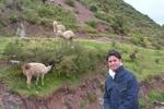 Valle Sagrado, Cuzco, Machu Picchu, Pisac, Lima...