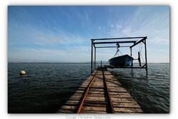 Port Conchylicole de Mèze