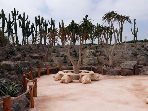 Un peu de repos.....sur Agadir