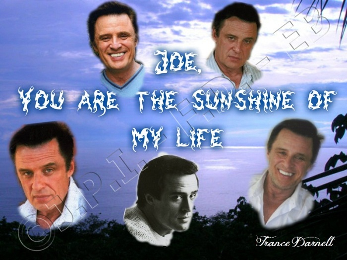 JOE, YOU ARE THE SUNSHINE OF MY LIFE ...
