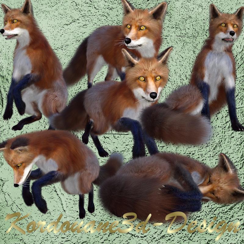 Image de renard roux (tube-render)