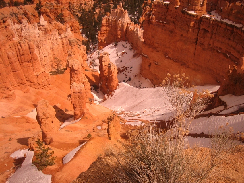 USA - BRYCE CANYON (suite)