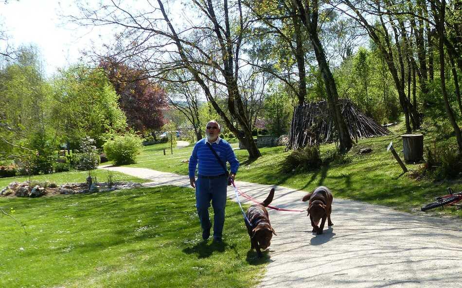 Promenade au jardin de Mornac.