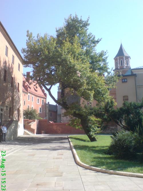 Wroclaw - Cracovie