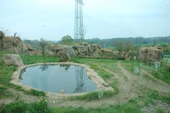 Zoo Osnabruck d50 2012 092