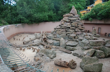 Zoo Neunkirchen 2012 107