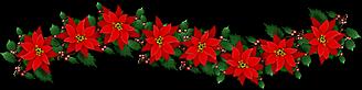 Noël 2016 VSP