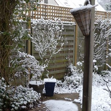 La neige persiste et signe...