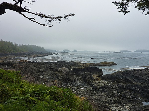 Jour 27 Ucluelet point phare 3