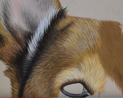 Dessin et peinture - vidéo 2998 : Comment peindre un chat à poils longs ? - crayons aquarellables ou autres techniques.
