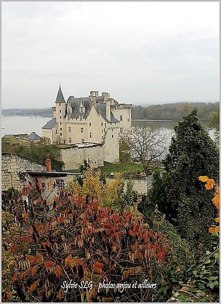 Claire-et-JF-en-Anjou 8785
